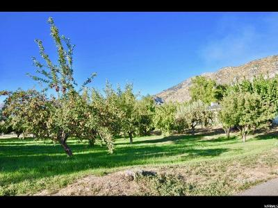 Provo Residential Lots & Land For Sale: 2454 N Timpview Dr