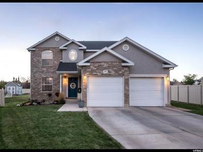 Saratoga Springs Single Family Home For Sale: 427 W Cinnamon Cir