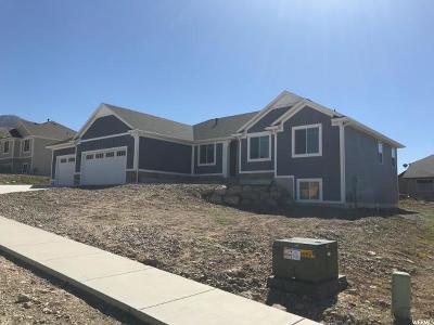 Smithfield Single Family Home For Sale: 1076 E 300 S