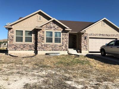 Eagle Mountain Single Family Home For Sale