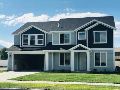 Springville Single Family Home For Sale: 713 W So S #25