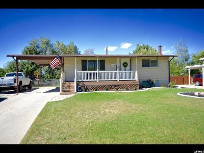 Sandy Single Family Home For Sale: 9918 S Electra Ln