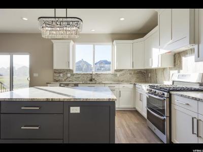 Eagle Mountain Single Family Home For Sale: 3887 E Clubhouse S