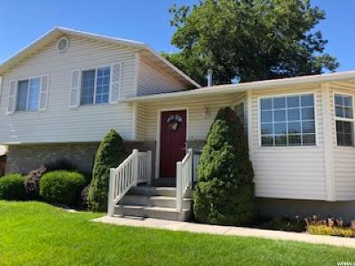 Orem Single Family Home For Sale: 784 S Main St