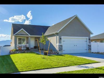 Eagle Mountain Single Family Home For Sale: 4221 N Lake Mountain Rd