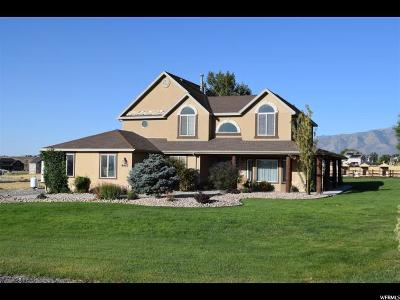 Eagle Mountain Single Family Home For Sale: 9447 N Elk Ridge Dr