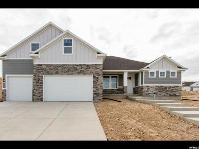 Saratoga Springs Single Family Home For Sale: 2233 S Remington Ave