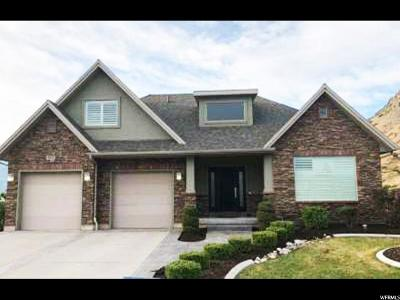 Single Family Home For Sale: 4032 W Shoreline Dr