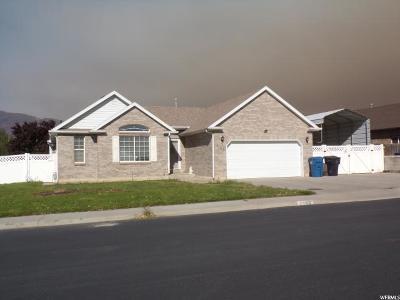 Spanish Fork Single Family Home For Sale: 1163 E 660 N