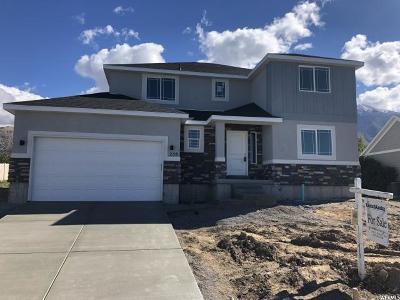 Salem Single Family Home For Sale: 258 N 900 E #19
