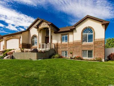 Tremonton Single Family Home For Sale: 2568 W Mountain Rd N