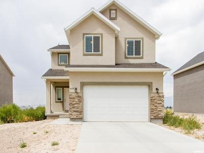 Eagle Mountain Single Family Home For Sale: 4097 N Sleeping Hollow Dr