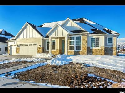 American Fork Single Family Home For Sale: 1033 E 1000 N