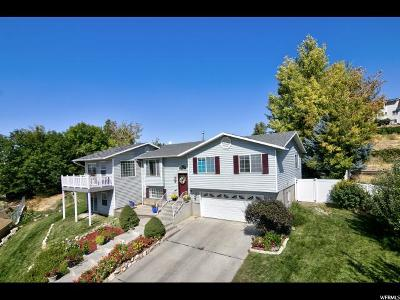 Orem Single Family Home For Sale: 1869 N 80 E