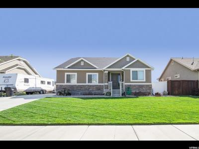 Springville Single Family Home For Sale: 1027 W 1550 S