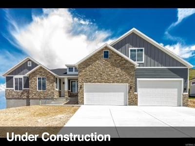 Saratoga Springs Single Family Home For Sale: 2218 S Remington Ave