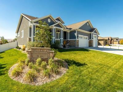 Riverton Single Family Home For Sale: 4011 W Deer Mountain Dr S