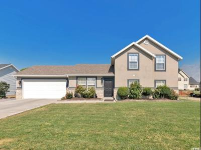Springville Single Family Home For Sale: 1524 W 1065 S