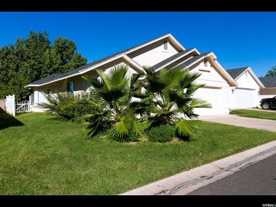 St. George Single Family Home For Sale: 710 S Indian Hills Dr
