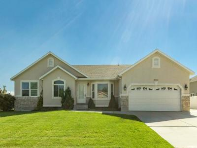 South Jordan Single Family Home For Sale: 3893 W Sage Point Way S