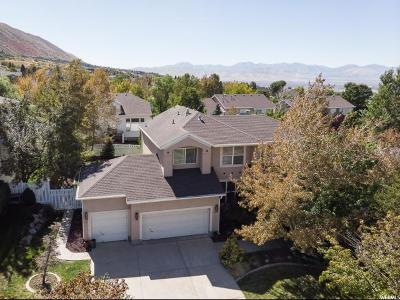 Draper Single Family Home For Sale: 14018 S Old Saddle Rd