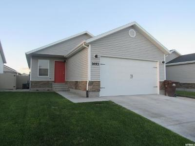 Eagle Mountain Single Family Home For Sale: 1693 E Downwater St N