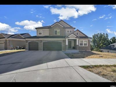 Provo UT Single Family Home For Sale: $725,000