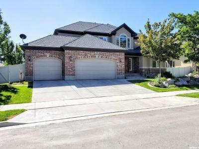 Riverton Single Family Home For Sale: 2767 W Augustana Dr