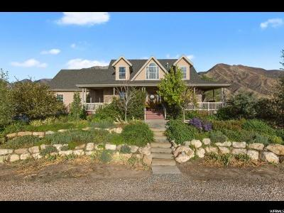 Mona Single Family Home For Sale: 1553 S Hwy 91