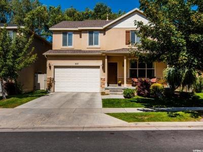 Sandy Single Family Home For Sale: 827 E Whisper Cove Rd S