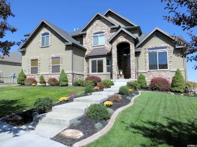 Saratoga Springs Single Family Home For Sale: 328 W Birch Dr