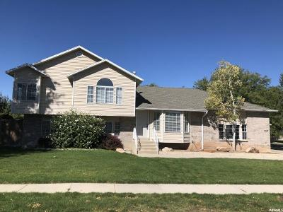 South Jordan Single Family Home For Sale: 1828 W Orchard View Dr