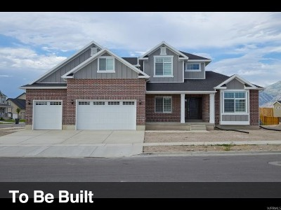 Lehi Single Family Home For Sale: 1356 W Sage Vista Dr N #15