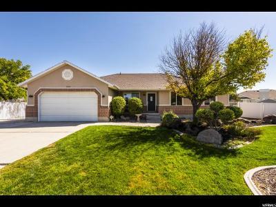 Riverton Single Family Home For Sale: 1201 W Sammy Cir S