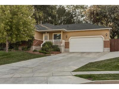 West Jordan Single Family Home For Sale: 3339 W Olive Tree Cir