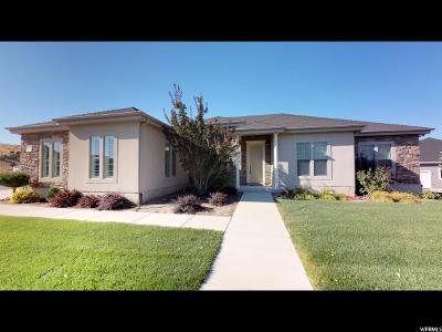 Santaquin Single Family Home For Sale: 1192 S Valley View Dr E