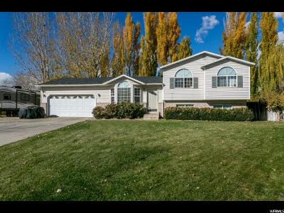 Springville Single Family Home For Sale: 547 E 550 N