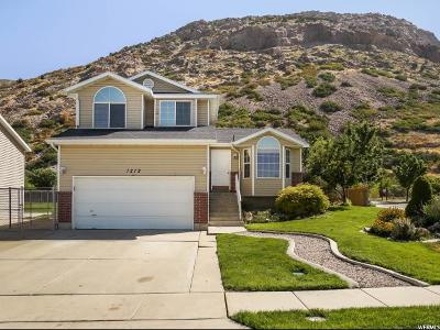 Single Family Home For Sale: 1212 N Lewis Peak Dr