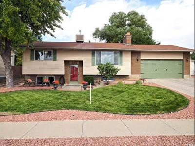 Sandy Single Family Home For Sale: 797 E Spruce Mesa Way S