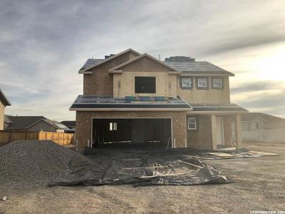 Tremonton Single Family Home For Sale: 801 W 900 S