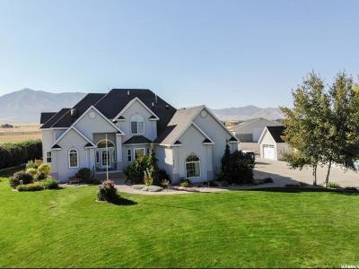 Erda Single Family Home For Sale: 1436 E Country Ln