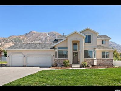 Cedar Hills Single Family Home For Sale: 9898 N Wild Flower Cir