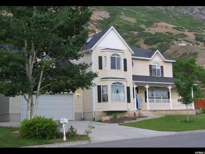 Provo Single Family Home For Sale: 1244 N Oak Hill Cir