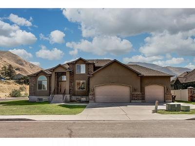Springville Single Family Home For Sale: 949 S Valley Sage Dr