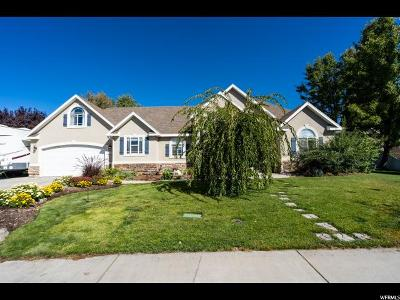 Lehi Single Family Home For Sale: 1347 E 1380 N
