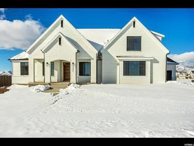 American Fork Single Family Home For Sale: 995 E 1000 N