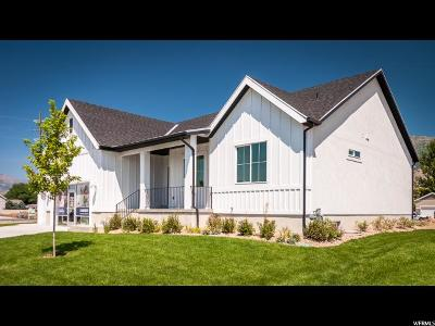 Provo Single Family Home For Sale: 1597 S 620 W #133