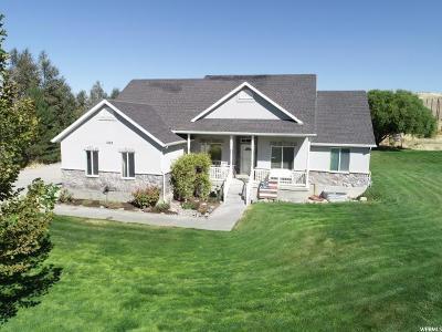 Erda Single Family Home For Sale: 1049 Ironwood Dr