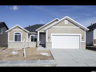 Brigham City Single Family Home For Sale: 1062 W 540 S