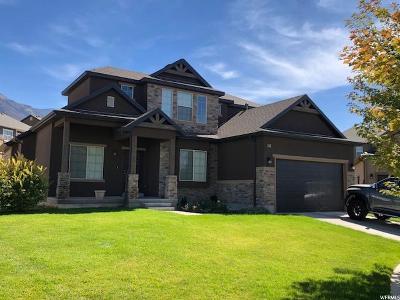 Elk Ridge Single Family Home For Sale: 91 W Cub Cir